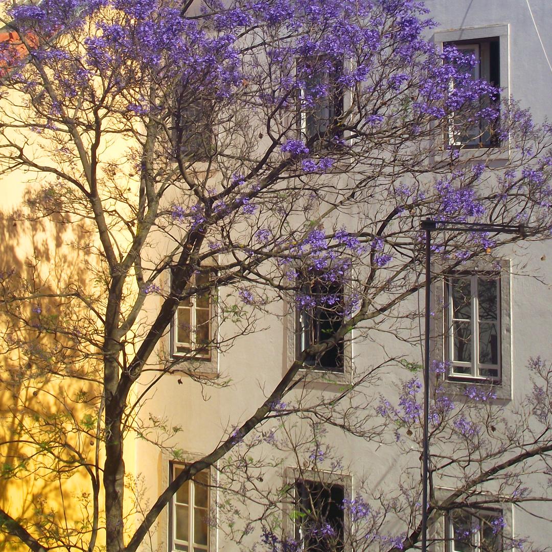Lisboa-125